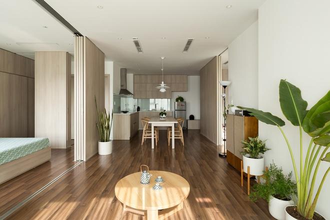 thiết kế chung cư mini