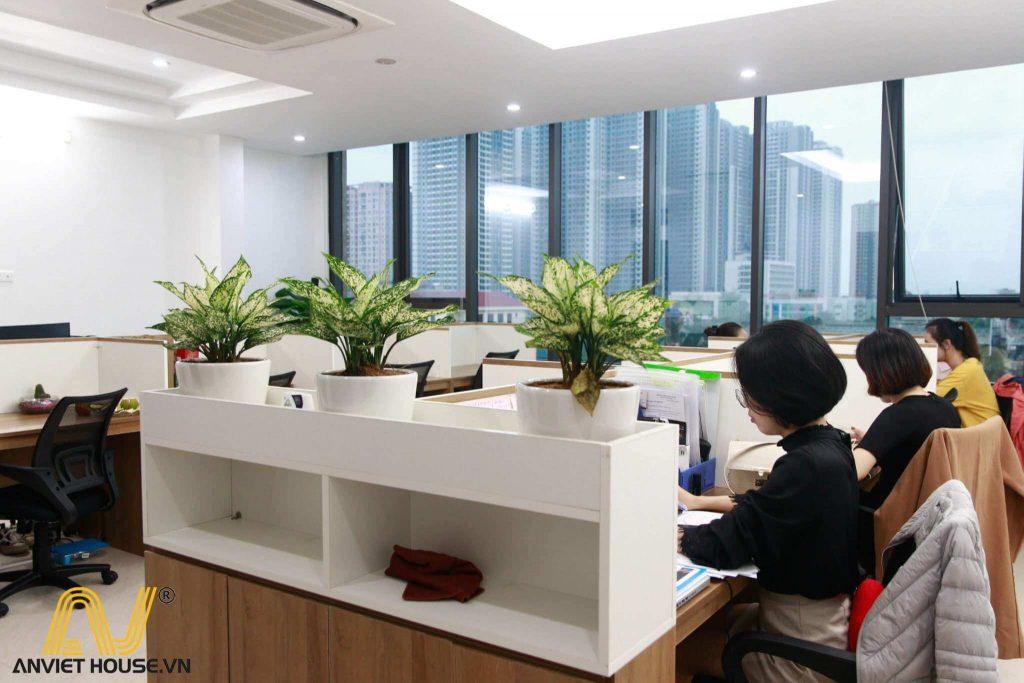 anviethouse sản xuất thi công nội thất phòng làm việc